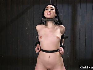 diminutive mammories honey toyed in contraption restrain bondage